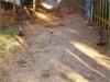 walkways_08